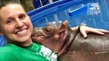 Team Fiona Favorite Selfies- Cincinnati Zoo & Botanical Garden