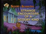 Scooby-Doo And Scrappy-Doo S 01 Ep 02 The Night Ghoul Of Wo