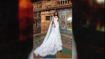Wedding Dresses Chicago https://dantelabridalcouture.com/