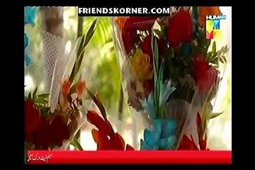Aik Larki Aam Si Episode 29