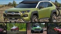 Hot News !!! 2019 Toyota RAV4 Adventure Grade   On  and Off Road Fun