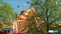 Strasbourg contre les animaux sauvages dans les cirques