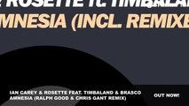 Ian Carey & Rosette feat. Timbaland & Brasco Amnesia (Ralph Good & Chris Gant Remix)