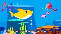 Bébé Requin | Chansons Animales | Chansons Rosefong Pour Enfants