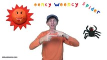 Eency Weency Spider | Nursery Rhyme and Finger Play | Preschool, Kindergarten, Learn Engli