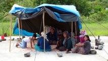 Mevsimlik tarım işçilerinin 'fındık' umudu - ORDU
