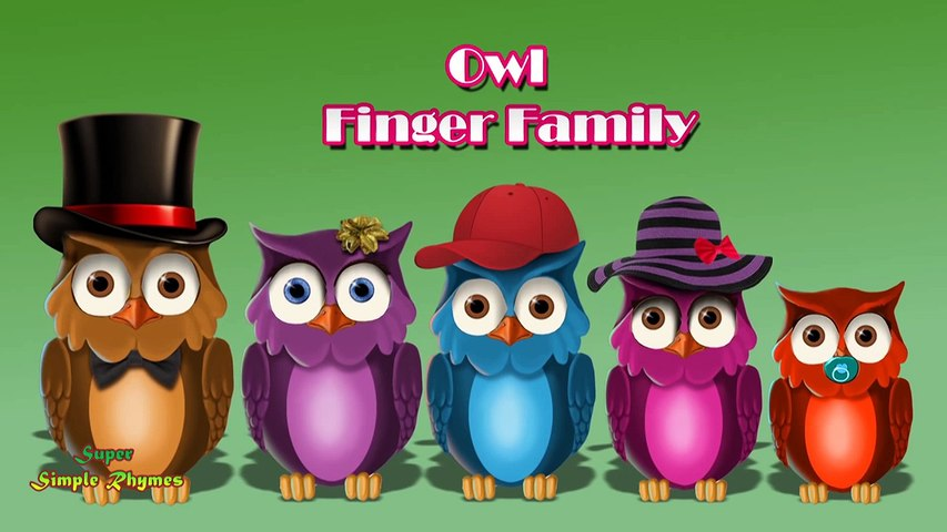 Finger Family Rhyme | Owl Family Nursery Rhyme | Daddy Finger Nursery Rhyme