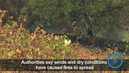 California wildfire: Flames engulf area near Lake Shasta