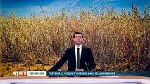 Feux de forêts: la province de Luxembourg prend des mesures