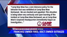 Dog Owner `Horrified` After Video Shows His Dog Being Kicked at Michigan Animal Boarder