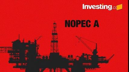 Congress Looks To Challenge OPEC's Power With Anti-Trust Legislation