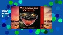 D0wnload Online Madagascar Wildlife: A Visitor s Guide (Bradt Travel Guide Madagascar Wildlife)
