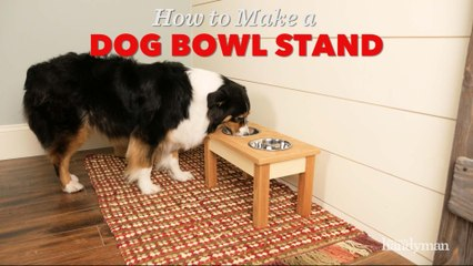 Saturday Morning Workshop: How To Build A Dog Bowl Stand