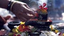 Sawan में शिव को चढाएं ये 6 पुष्प, हर मनोकामना होगी पूरी | Flowers to offer Lord Shiv | Boldsky