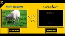 LES ANIMEAUX EN CHAWI-TAMAZIGHT - HOW TO SAY ANIMALS IN TAMAZIGHT- IGHARSSIYEN