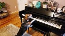 Un chien joue du piano mais bébé n'aime pas