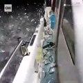 Des milliers de sardines débarquent sur le bateau d'un pêcheur !