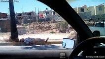 Un Hombre Acostado En La Calle Aventura En Tijuana Baja California Mexico Con Shialeweb
