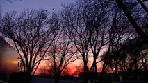 Mystery: Sky Turns Red Millions of Crows Blacken The Sky ! Crows Invade Minneapolis !