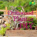 """Jane (AKA """"Woman"""" from Animal Planet's #InsanePools) gives some great tips on making your OWN driftwood planter!"""