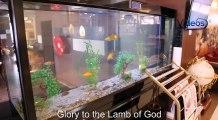 VBTV : JIMMY D PSALMIST - GREAT AND MIGHTY - VIDEOSBANKTV - Video with lyrics