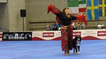Border collie and owner wow audience with captivating routine at Dog Dance World Championships