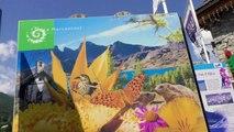 Alpes-de-Haute-Provence :  les drones sont-ils un problème pour la faune du parc national du Mercantour ?