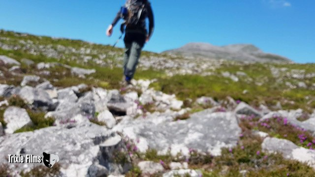 Mountaineering Training for Hiking and Peak Bagging Summit Success