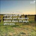 Toute l'Afrique interdit désormais l'excision