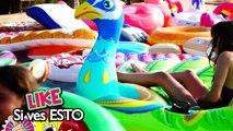 GLOBOS de AGUA en la PISCINA  Reto del TORO MECÁNICO  24 horas jugando con EL MUNDO DE CLODETT