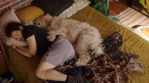Adam Pally Tells His Dog 'It's Too early'
