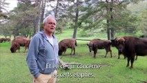 La Réserve des Monts d'Azur : le retour gagnant de la biodiversité d'antan