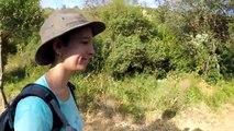 J'ai TROUVÉ une ÉNORME reine fourmis en pleine NATURE !