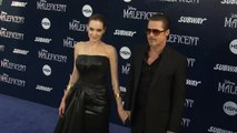 Brad Pitt retaliates to Angelina Jolie's child support claim