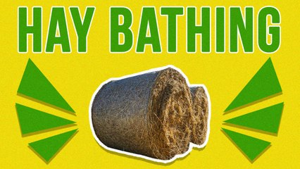 Hay Bathing: New Wellness Trend