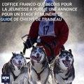 Le Québec ouvre ses portes aux Français qui veulent devenir meneur de chiens