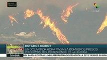 teleSUR noticias. Argentina: datos alarmantes sobre crisis económica