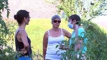 DÉCOUVERTE/ Les jardins partagés, une autre manière de cultiver - 10/08/2018