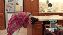 Dành Cả Thanh Xuân Để Yêu Em   Tập  41   Lồng Tiếng  - Phim Trung Quốc -   Đường Yên, La Tấn, Vương Chí Văn, Trương Hy Lâm, Hứa Linh Nguyệt, Vu Tề Vỹ, Mã Trình Trình