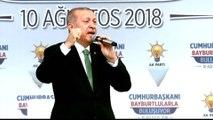 Erdogan says Turkey economy under attack as Trump doubles tariffs
