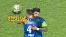 Grenoble Foot 38 - Chamois Niortais (1-0)  - Résumé - (GF38-CNFC) / 2018-19