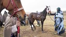 Horse racing is a big sport in Lesotho and the Independence Day Horse Race finale took place on Saturday 7th October, close to Semonkong Lodge, Place of Smoke.