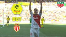 But Stevan JOVETIC (80ème) / FC Nantes - AS Monaco - (1-3) - (FCN-ASM) / 2018-19
