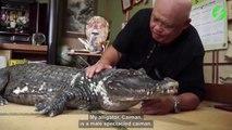 Cet homme vit avec un crocodile de compagnie