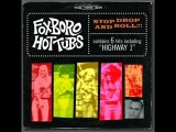 Foxboro hot tubs-mother mary (greenday)