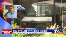 Couple`s Missing Car, Dog Recovered After Being Stolen from Virginia Parking Lot