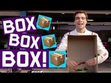 BOX BOX BOX! Dragon's D'Ambrosio vs Pechito Lopez