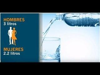 ¿Cuánta agua debes tomar al día? | Vida y Salud: Dra Aliza