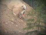 Rally Car crashes into Trees - Welsh Rally