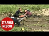 Firefighters rescue man and his parrot who had sunken into mud like 'quicksand'